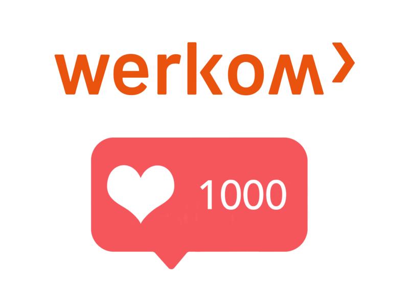 1000 volgers3